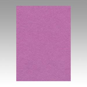 【スーパーセールでポイント最大44倍】(まとめ) 色画用紙 文運堂 ニューカラーR 赤紫 4NCR-231 4954022642310 1冊【5×セット】