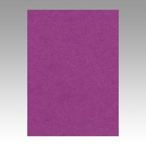 【スーパーセールでポイント最大44倍】(まとめ) 色画用紙 文運堂 ニューカラーR 紫 4NCR-241 4954022642419 1冊【5×セット】