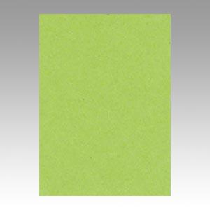 【スーパーセールでポイント最大44倍】(まとめ) 色画用紙 文運堂 ニューカラーR 黄緑 4NCR-212 4954022642129 1冊【5×セット】