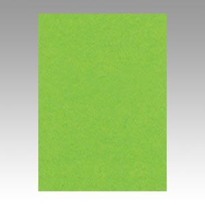 (まとめ) 色画用紙 文運堂 ニューカラーR 濃い黄緑 4NCR-238 4954022642389 1冊【5×セット】