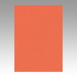 【スーパーセールでポイント最大44倍】(まとめ) 色画用紙 文運堂 ニューカラーR 橙 10-213 4902681812131 1本【10×セット】