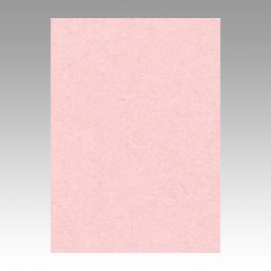 【スーパーセールでポイント最大44倍】(まとめ) 色画用紙 文運堂 ニューカラーR 薄桃色 10-102 4902681811028 1本【10×セット】