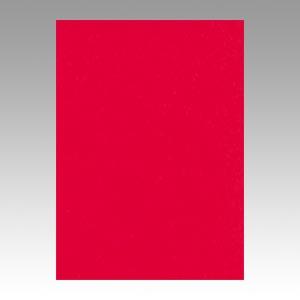(まとめ) 色画用紙 文運堂 ニューカラーR 赤 10-317 4902681813176 1本【10×セット】