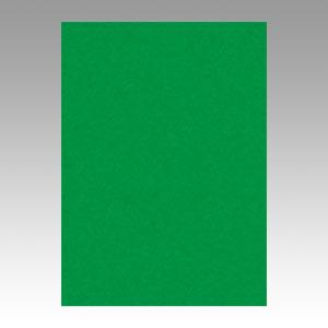 (まとめ) 色画用紙 文運堂 ニューカラーR 緑 10-321 4902681813213 1本【10×セット】