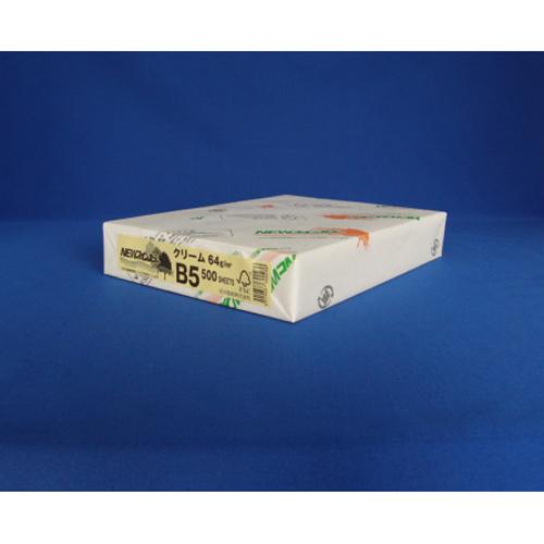 (まとめ) コピー用紙(カラー用紙) 北越紀州 NEWファインカラー NEWファインカラ-B5クリ-ム 4535449313412 1冊【20×セット】