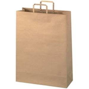 【スーパーセールでポイント最大44倍】ジョインテックス 手提袋 平紐 茶 特大 300枚 B294JB6