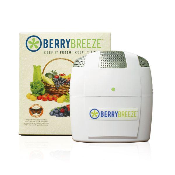 【マラソンでポイント最大43倍】冷蔵庫専用空気清浄機 BerryBreeze BB001