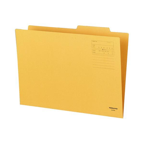 (まとめ) コクヨ 個別フォルダー A3 KNA3-IFNX10 1パック(10冊) 【×3セット】