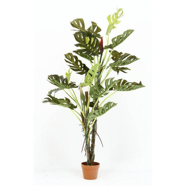 観葉植物/フェイクグリーン 【スプリット 22】 6号鉢対応 幅80cm 〔リビング ガーデニング〕【代引不可】