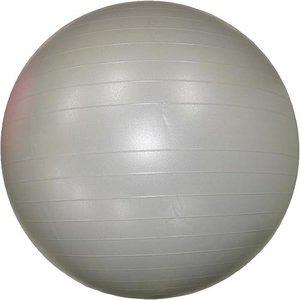【8個セット】エクササイズボール シルバー 75cm