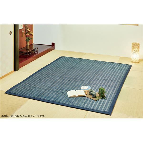 い草 ラグマット/絨毯 【約180×240cm ブルー】 裏貼り 折りたたみ可 クッション性 縁:綿100% 『仙名 せんな』 〔リビング〕【代引不可】