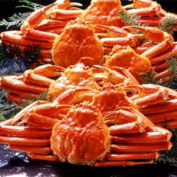 【スーパーセールでポイント最大44倍】【身入り抜群のA級品!】カナダ産ボイルズワイガニ姿・約500g×6尾 冷凍ズワイ蟹