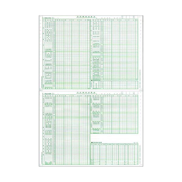 東京ビジネス 合計残高試算表 (一般・科目印刷・消費税無) 平成18年会社法対応 CG1006OZU2 1冊(50セット) 【×10セット】