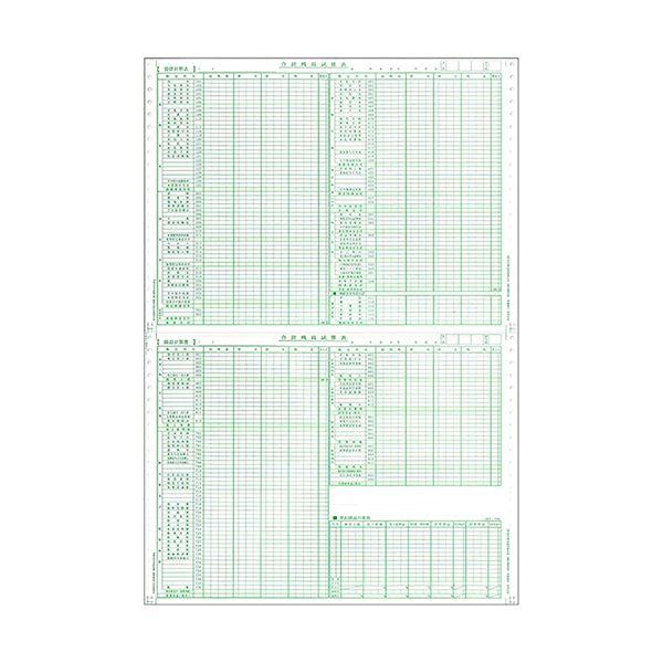 東京ビジネス 合計残高試算表 (建設・科目印刷) 平成14年商法改正対応 CG1006KZS 1冊(50セット) 【×10セット】
