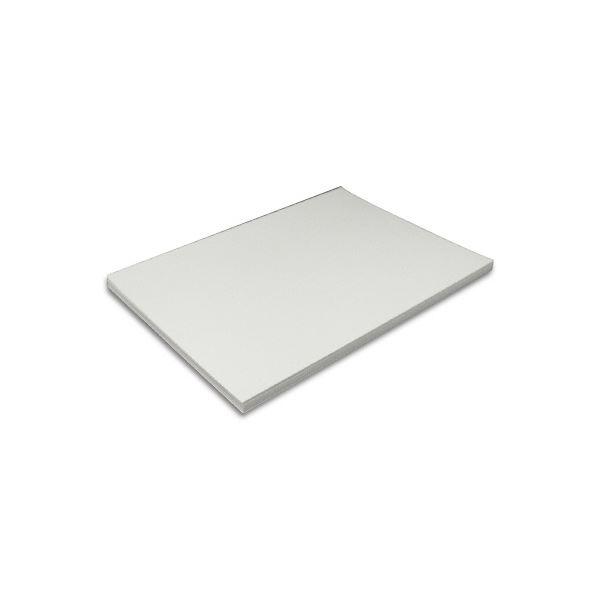 王子製紙 ミラーコートプラチナ A3Y目256g 60036-26 1セット(500枚)