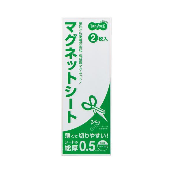 (まとめ) TANOSEE マグネットカラーシート ライト 300×100×0.5mm 白 1セット(20枚:2枚×10パック) 【×5セット】