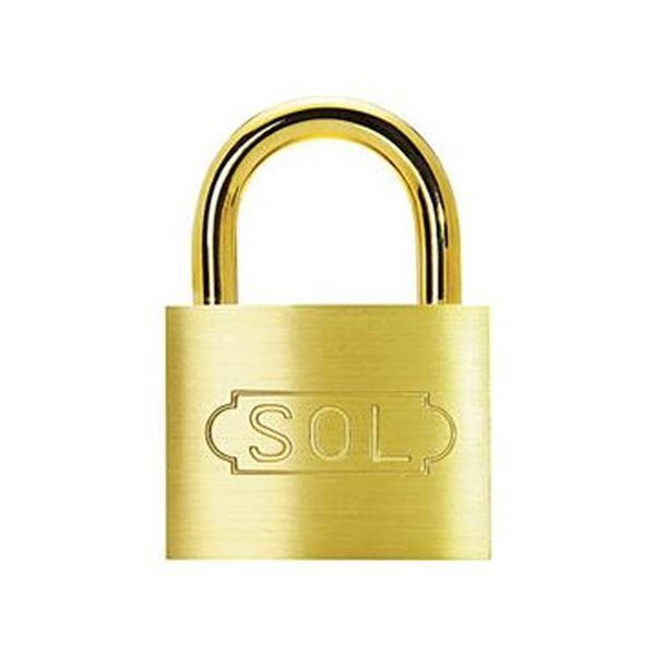 (まとめ)清水 SOLシリンダー南京錠2500SD-25 1個【×20セット】