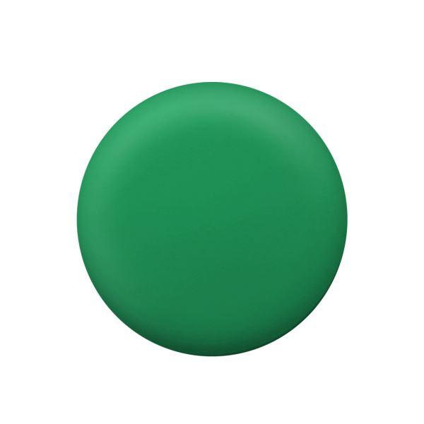 (まとめ) PLUS カラーマグネット 直径20mmグリーン CP-020M 1パック(6個) 【×50セット】