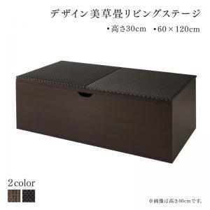 国産 収納付きデザイン美草畳リビングステージ 風凛 フーリン 畳ボックス収納 120×60cm ロータイプ【代引不可】