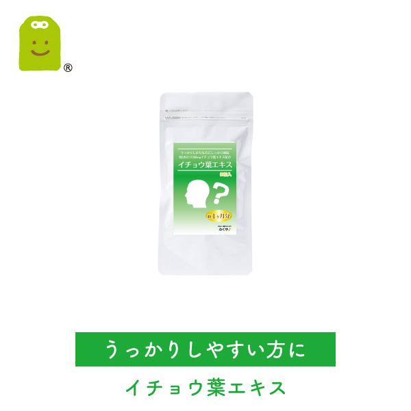 イチョウ葉エキス サプリメント (メール便送料無料・約1ヶ月分) イチョウ葉 サプリ 健康維持 いちょう葉 ギンコビローバ ginkgo leaf extract  お守りサプリ