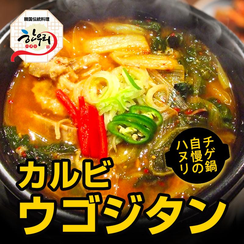 【冷東】「韓国伝統料理ハヌリ」 カルビウゴジタン(600g) 韓国料理 韓国スープ