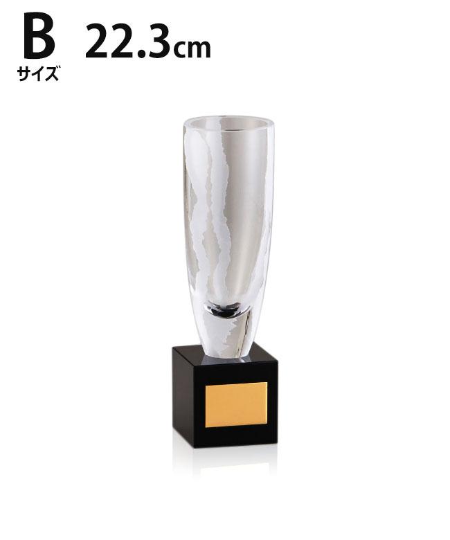 ガラス優勝カップ 22.3cm 3サイズ 紅白リボン付 名入れ 持ち回り レプリカ ゴルフ 野球 サッカー 表彰 賞品 大会 コンペ イベント《送料無料・文字入無料》【YYC-02940 Bサイズ】高さ:22.3cm 口径:6.5cm MG 22