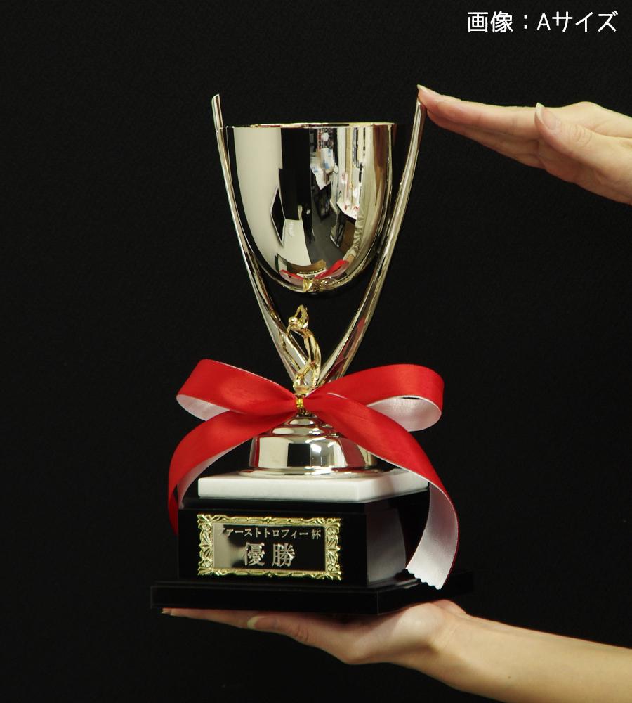 ゴルフ優勝カップ 金属製 29cm 3サイズ 名入れ 持ち回り レプリカ ホールインワン 紅白リボン付 表彰 賞品 大会 コンペ イベント《送料無料・文字入無料》【MPS-01164 Aサイズ】高さ:29cm 幅:10.5cm K6
