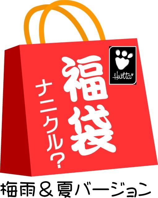 梅雨 夏バージョン 再再販 フィンランドのドッグブランド Hurtta 福袋 ~夏か梅雨に使えるグッズが1枚は必ずゲットできるYO~ 情熱セール フルッタ ナニクル?袋