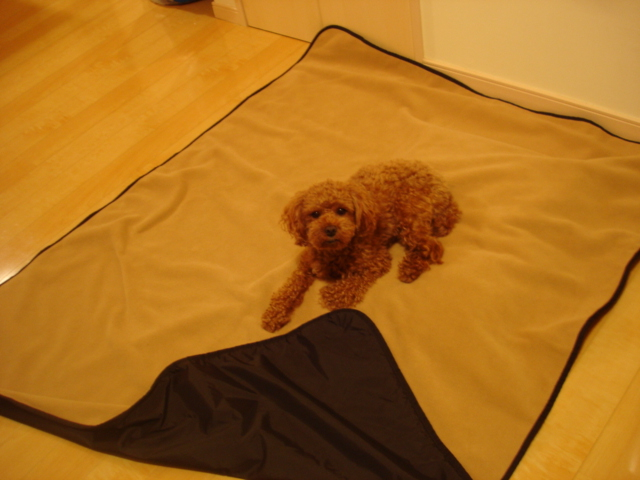 Mambe Blanket(メイブ・ブランケット) ペットブランケット Lサイズ