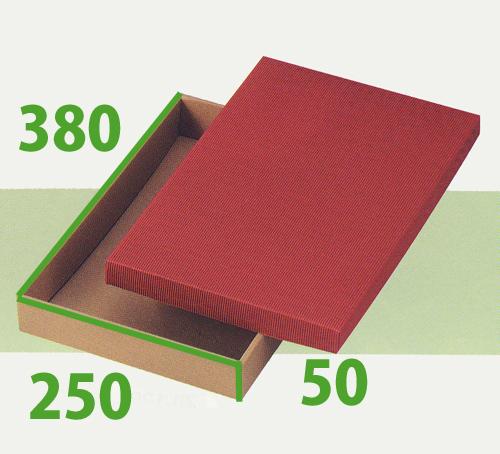 送料無料・カラーBOX「赤L」380×250×50mm「100枚」ダンボール 片段 ギフト箱 包装 かぶせ箱 カラーボックス※代引不可※ ※個人様宛配送不可※
