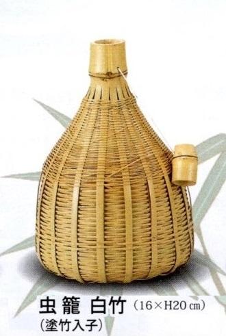 虫籠 白竹