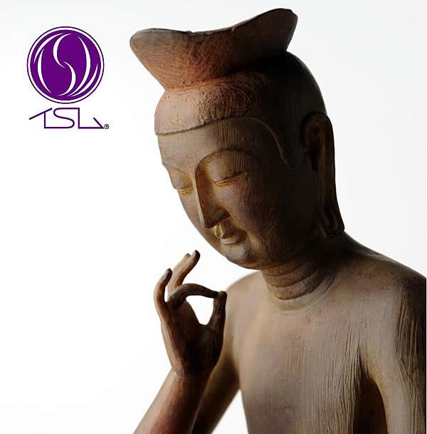 弥勒菩薩(みろくぼさつ) イSム ( イスム ) 仏像 フィギュア イスム いすむ インテリア仏像 仏像ワールド 送料無料