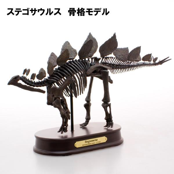 フェバリット 恐竜 フィギュア FDS604/BR ステゴサウルス/スケルトンモデル(骨格モデル) (70104)