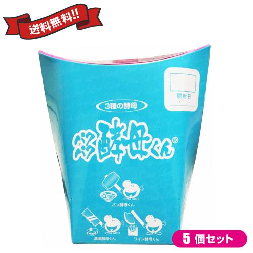 【ポイント6倍】最大33倍!パクパク酵母くん 31袋入り 5箱セット