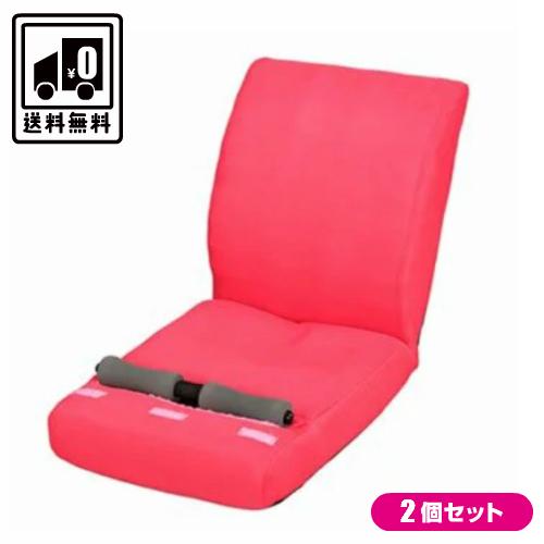 PF2500 ピュアフィット 腹筋のびのび座椅子 2個セット