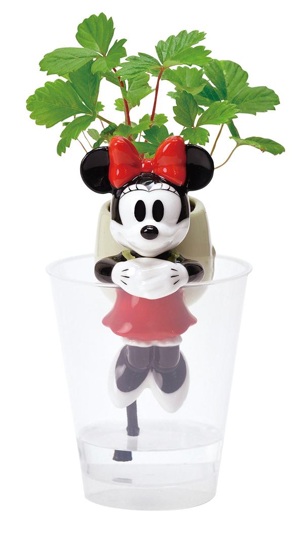 グローテール Disney WD-01 WD-02 ミニー/ワイルドストロベリー 72点