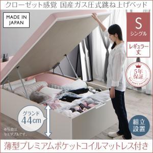 組立設置付 クローゼット跳ね上げベッド aimable エマーブル 薄型プレミアムポケットコイルマットレス付き 縦開き シングル レギュラー丈 深さグランド