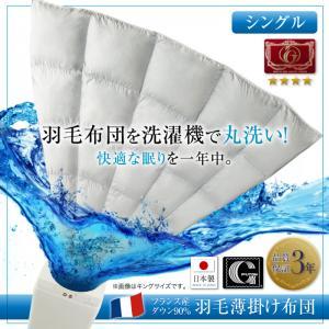 洗濯機で洗える エクセルゴールドラベル フランス産ダウン90% 羽毛薄掛け布団 Wash ウォッシュシングル