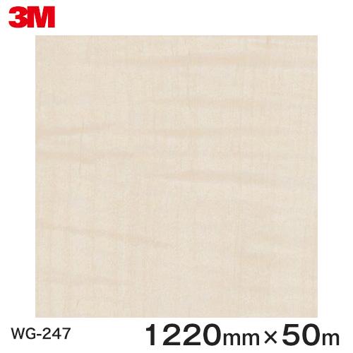 ダイノックシート<3M><ダイノック>フィルム 木目シート Wood Grain ウッドグレイン シカモア 柾目 WG-247 原反巾 1220mm 1巻(50m)