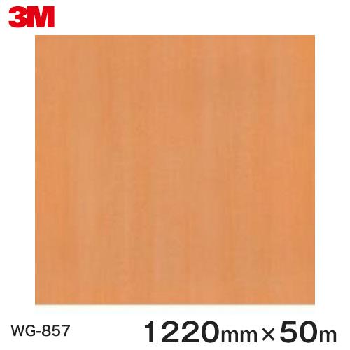 ダイノックシート<3M><ダイノック>フィルム 木目シート Wood Grain ウッドグレイン ビーチ/ブナ 板柾 WG-857 原反巾 1220mm 1巻(50m)