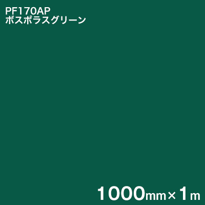 凹凸のある壁面などの粗面に 長期屋外サイン用カッティング用シート 手書きより早く 簡単 PF170AP 訳あり ボスポラスグリーン スコッチカル 3M 1000mm×1m ペイントフィルム カラータイプ お得なキャンペーンを実施中