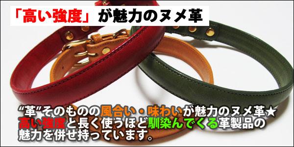 テニー 首輪 猫 犬 本革 日本製 【10mm幅/首廻り20-25cm/小型犬】