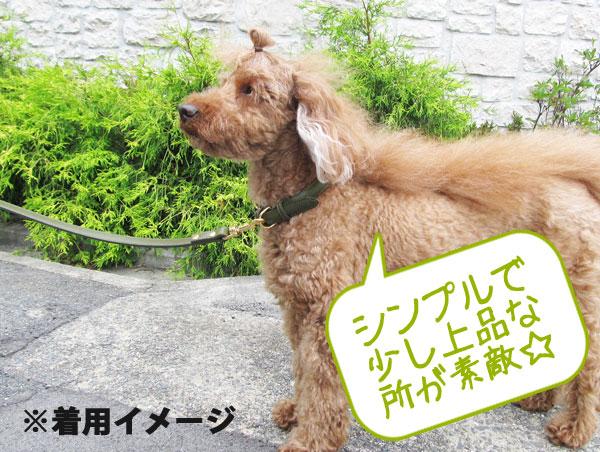 テニー リード 猫 犬 本革 日本製 【10mm幅/全長110cm/小型犬用】