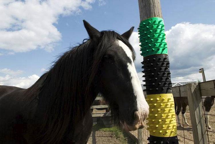 体掻きマット/放牧地や厩舎(馬房)に最適!厩舎用品 馬・ヤギ・アルパカ・牛・羊!!