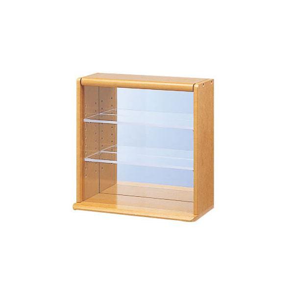 オフィス収納 業務用セット コレクションケース ミニ ×2セット 日時指定 透明アクリル棚板タイプ CCM-001LS 品質検査済