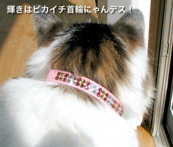 高品質 ラインストーンおしゃれ猫首輪10ミリパート2 ダブルラインシリーズ 猫用首輪 注文後の変更キャンセル返品 Mサイズ