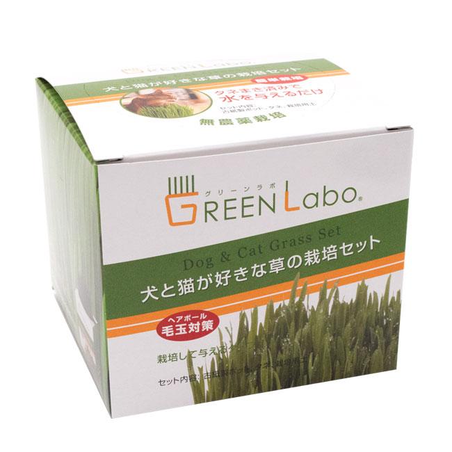 燕麦(エンバク)が好きな猫ちゃんのために~無農薬栽培~ エイムクリエイツ 犬と猫が好きな草 栽培セット ペットグラス 猫草
