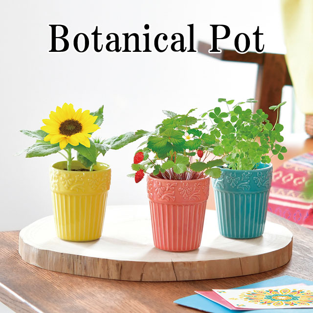 ボタニカルモチーフのレリーフが刻まれた陶器のポットで育てます 植物をイメージしたカラーリングで 絶品 お部屋がぱっと華やかに 育て終わったあとのポットは小物入れとしても活躍 栽培キット Botanical Pot ボタニカル ポット 栽培セット ワイルドストロベリー ミニヒマワリ ヒマワリ ハーブ 置物 かわいい 向日葵 植物 オシャレ インテリア 大好評です 四つ葉のクローバー グリーン グッズ