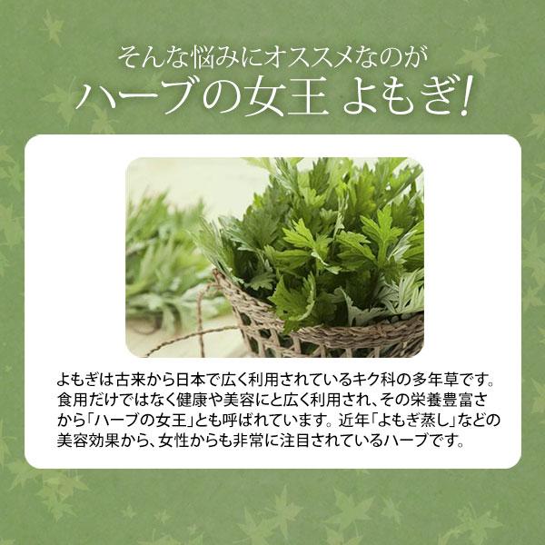 <Yomogi> 유기농 쑥 차 2g× 10 포 [쑥 차 쑥 차 쑥 쑥 건강 차] [업무용 개업 용] [에스테틱 용품] [7 에스테틱] ◆