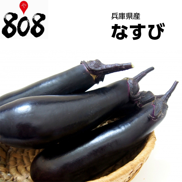 味と見た目の美しさは日本随一 送料別 西日本産 なすび 1パック 35%OFF 約300g 日本メーカー新品 野菜詰め合わせセットと同梱で送料無料 野菜宅配 煮浸し 父の日 敬老の日 ナスビ 茄子 母の日